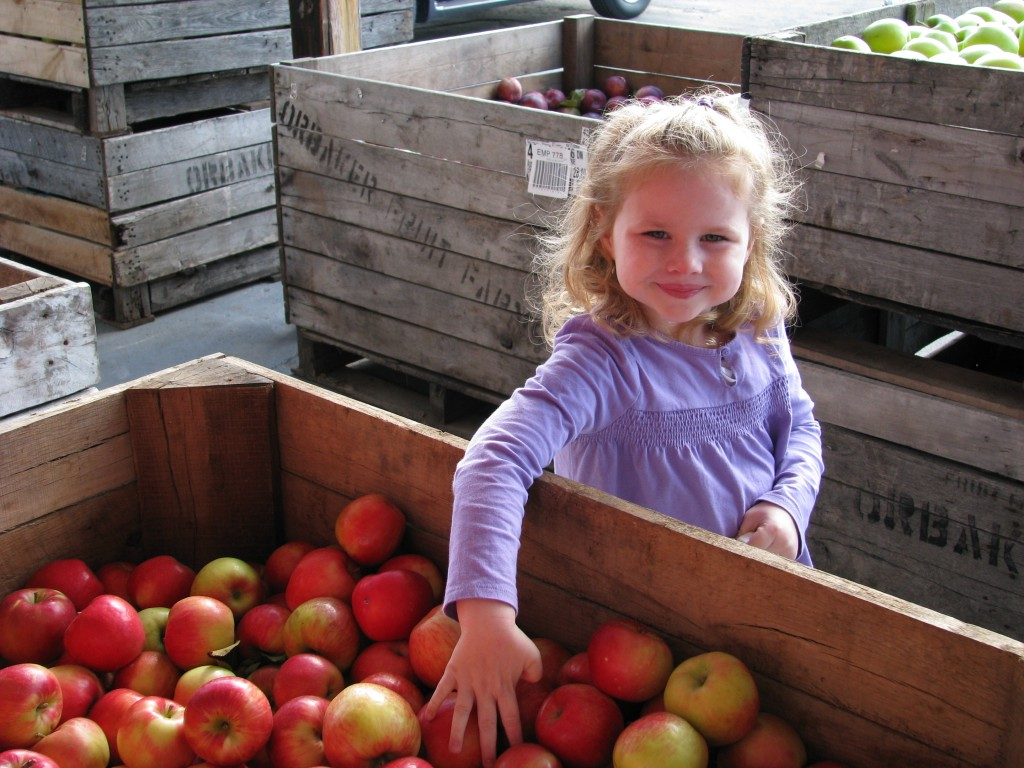 Finger Lakes Apple Picking